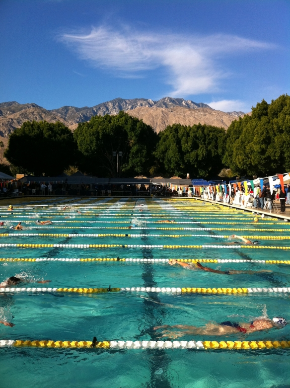 Palm Springs Aquatic Center where my kids spent their youth.